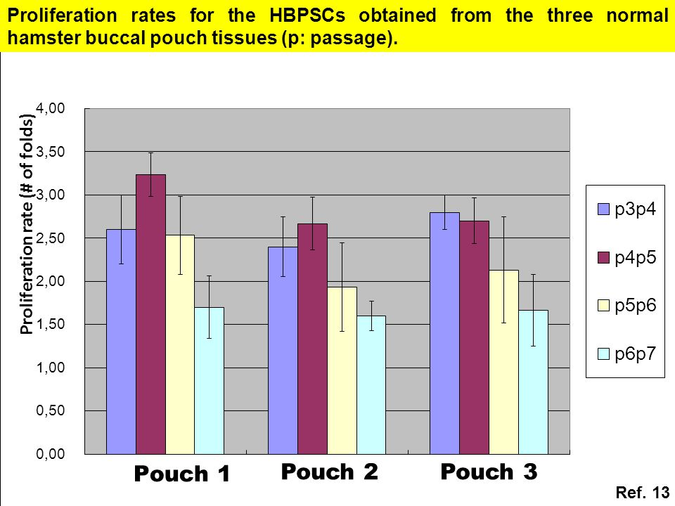 Proliferation rate (# of folds) Pouch 2Pouch 3 Proliferation rates for the HBPSCs obtained from the three normal hamster buccal pouch tissues (p: passage).