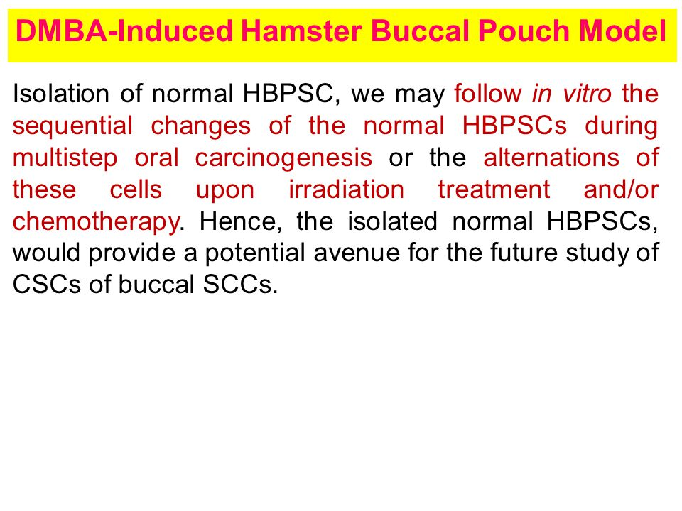 Isolation of normal HBPSC, we may follow in vitro the sequential changes of the normal HBPSCs during multistep oral carcinogenesis or the alternations