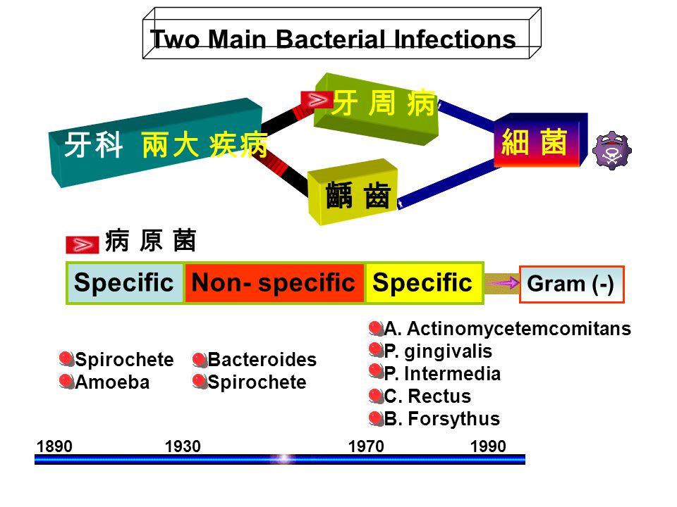 19301890 1970 1990 SpecificNon- specificSpecific Spirochete Amoeba Bacteroides Spirochete A. Actinomycetemcomitans P. gingivalis P. Intermedia C. Rect