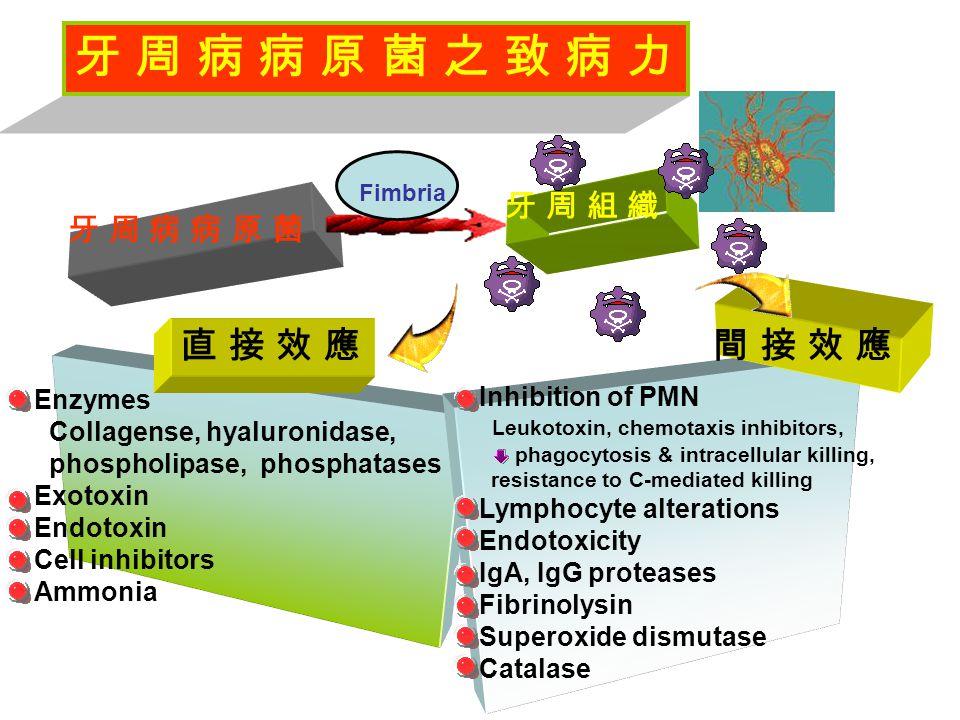 牙 周 病 病 原 菌 牙 周 病 病 原 菌 牙 周 組 織牙 周 組 織 Enzymes Collagense, hyaluronidase, phospholipase, phosphatases Exotoxin Endotoxin Cell inhibitors Ammonia 直 接 效