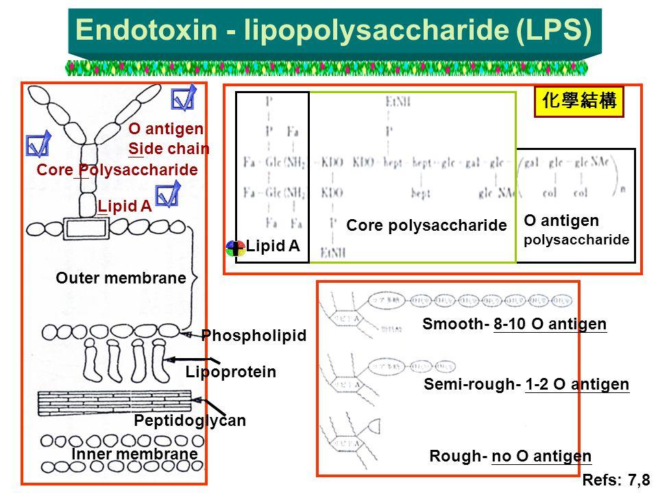 Endotoxin - lipopolysaccharide (LPS) O antigen polysaccharide Core polysaccharide Lipid A 化學結構 Smooth- 8-10 O antigen Semi-rough- 1-2 O antigen Rough-