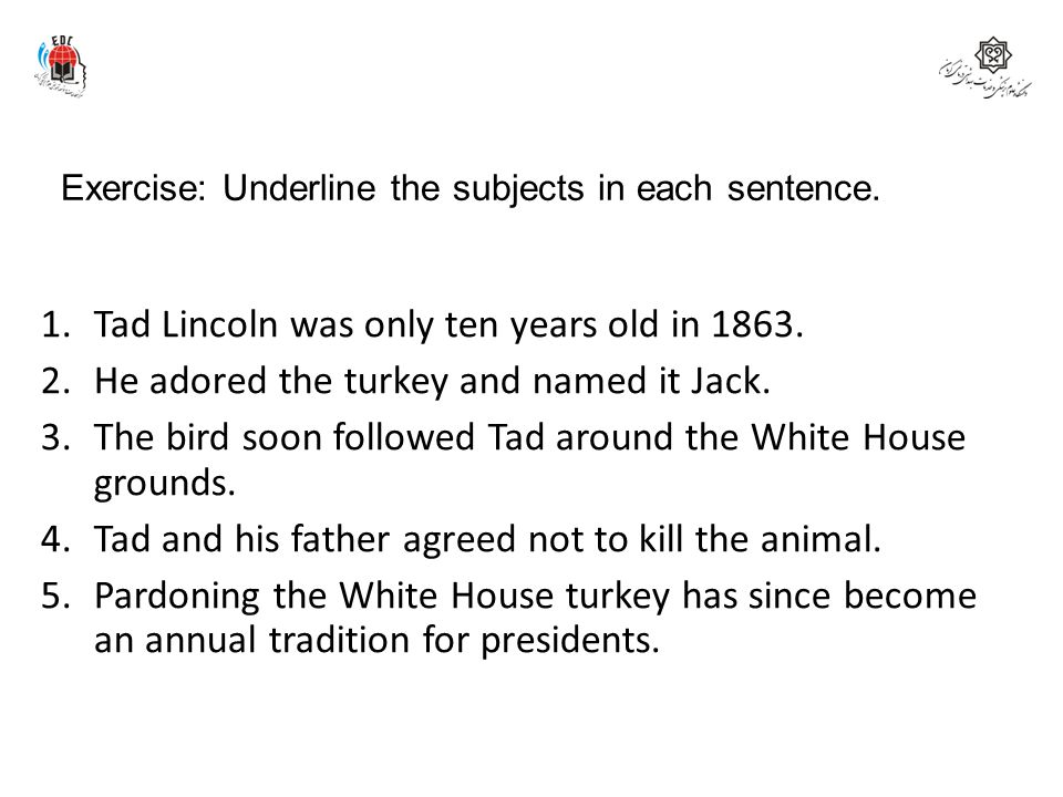 Exercise: Underline the subjects in each sentence. 1.Tad Lincoln was only ten years old in 1863. 2.He adored the turkey and named it Jack. 3.The bird