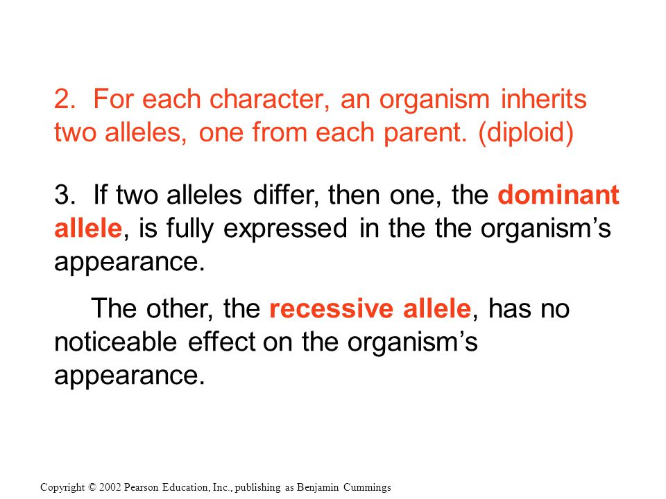 2.For each character, an organism inherits two alleles, one from each parent.