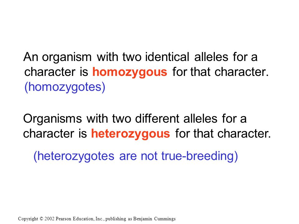 An organism with two identical alleles for a character is homozygous for that character.