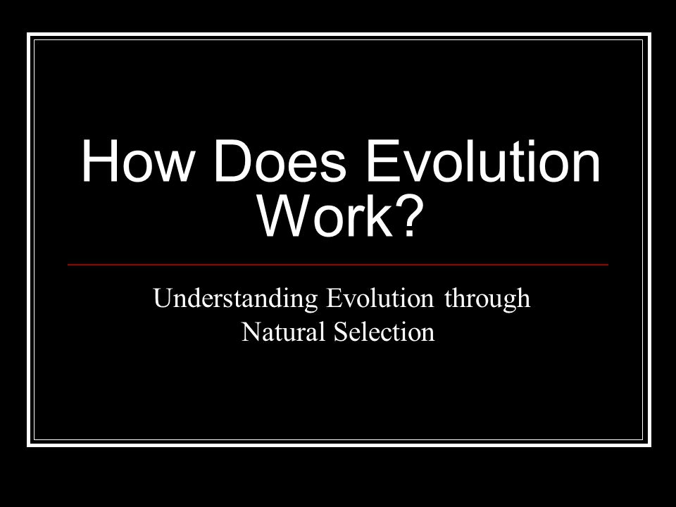 How Does Evolution Work? Understanding Evolution through Natural Selection