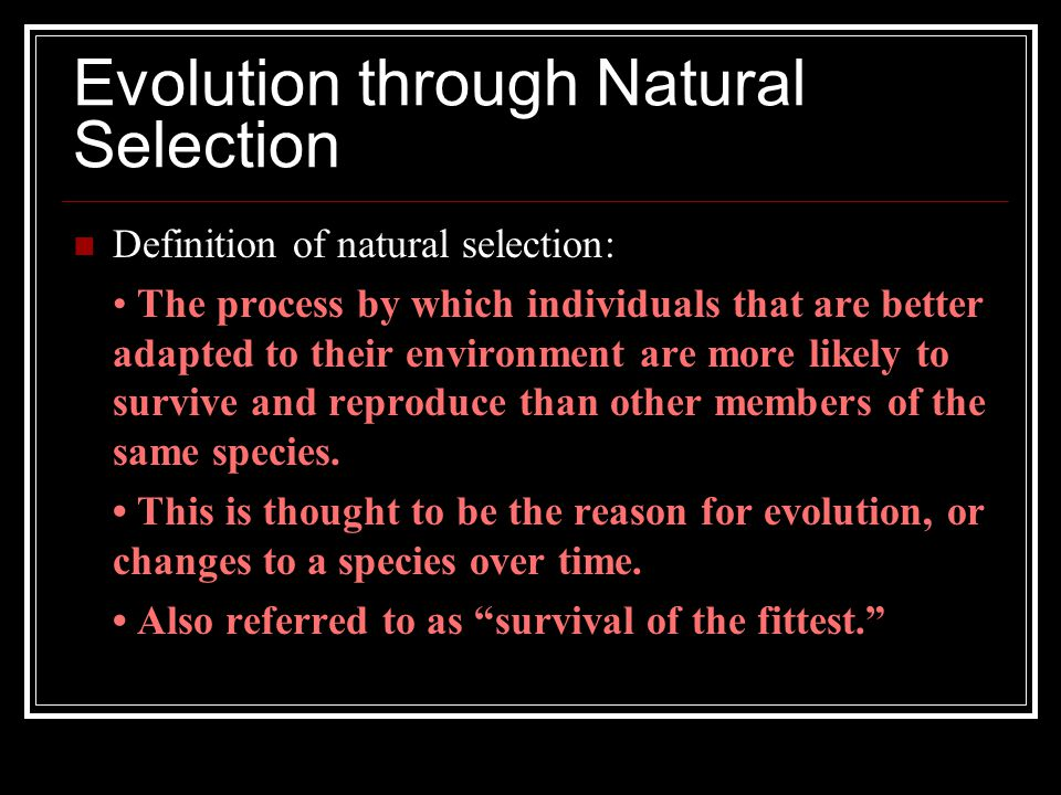 Evolution through Natural Selection Definition of natural selection: The process by which individuals that are better adapted to their environment are