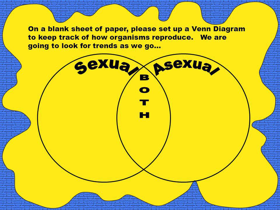 On a blank sheet of paper, please set up a Venn Diagram to keep track of how organisms reproduce.