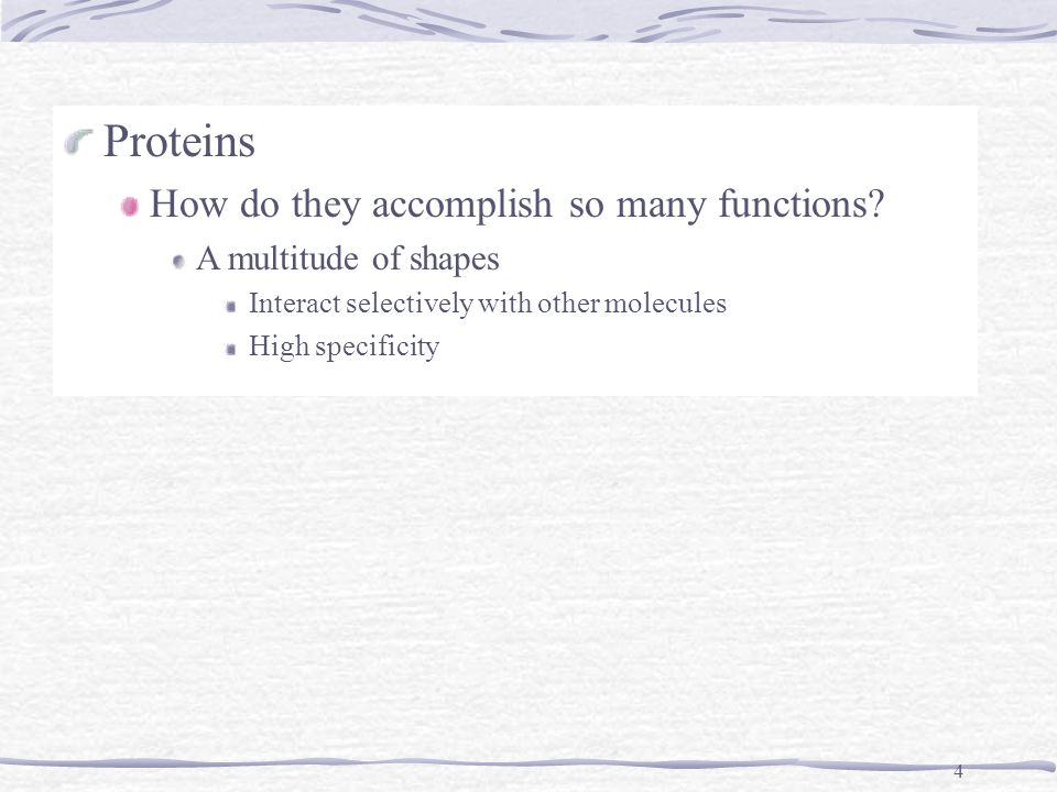 4 Proteins How do they accomplish so many functions.