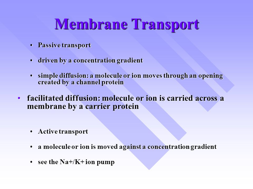 Membrane Transport Passive transportPassive transport driven by a concentration gradientdriven by a concentration gradient simple diffusion: a molecule or ion moves through an opening created by a channel proteinsimple diffusion: a molecule or ion moves through an opening created by a channel protein facilitated diffusion: molecule or ion is carried across a membrane by a carrier proteinfacilitated diffusion: molecule or ion is carried across a membrane by a carrier protein Active transportActive transport a molecule or ion is moved against a concentration gradienta molecule or ion is moved against a concentration gradient see the Na+/K+ ion pumpsee the Na+/K+ ion pump