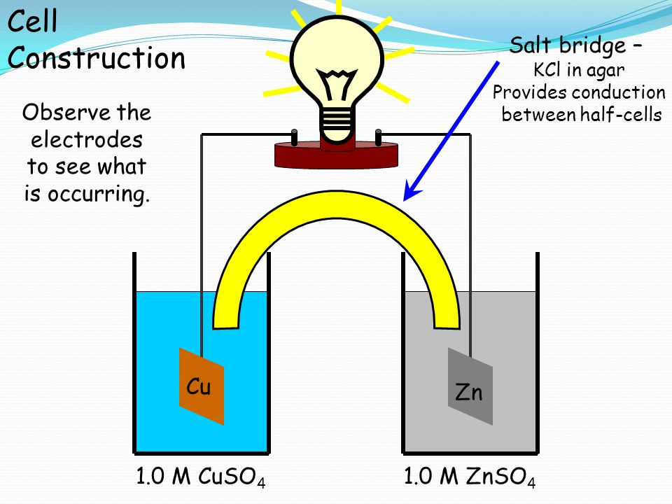 Cu 1.0 M CuSO 4 Zn 1.0 M ZnSO 4 Salt bridge – KCl in agar Provides conduction between half-cells Cell Construction Observe the electrodes to see what