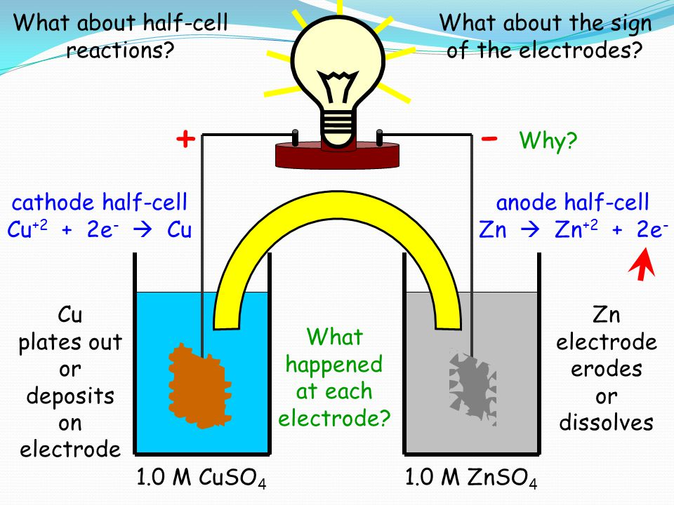 Cu 1.0 M CuSO 4 Zn 1.0 M ZnSO 4 Cu plates out or deposits on electrode Zn electrode erodes or dissolves cathode half-cell Cu +2 + 2e -  Cu anode half