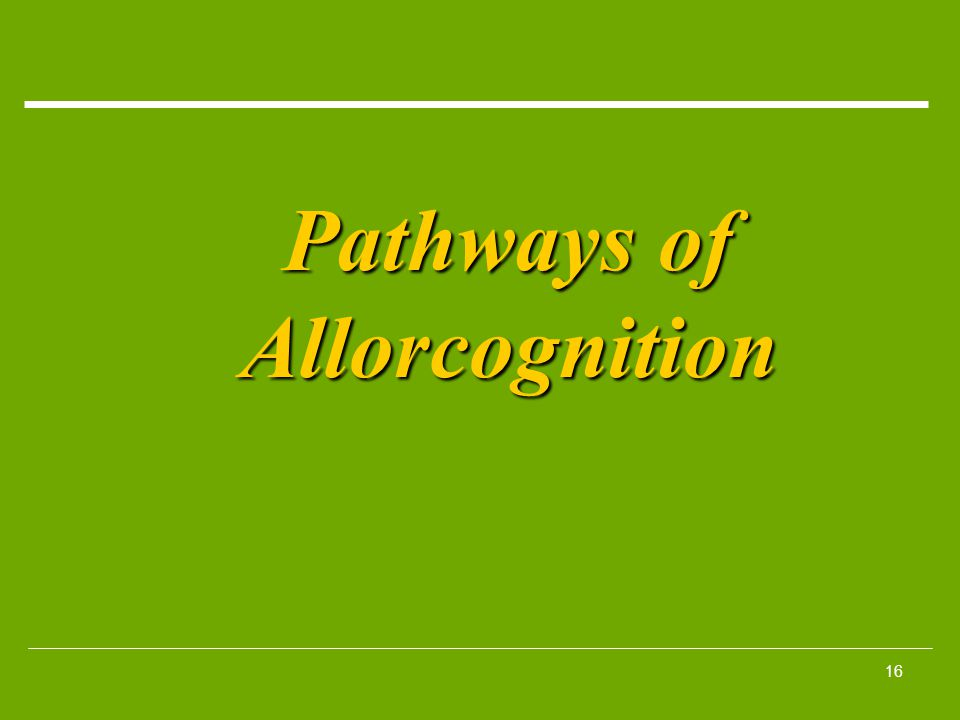 16 Pathways of Allorcognition