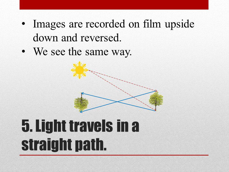Images are recorded on film upside down and reversed. We see the same way.