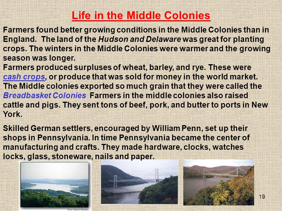 19 Farmers produced surpluses of wheat, barley, and rye. These were cash crops, or produce that was sold for money in the world market. The Middle col