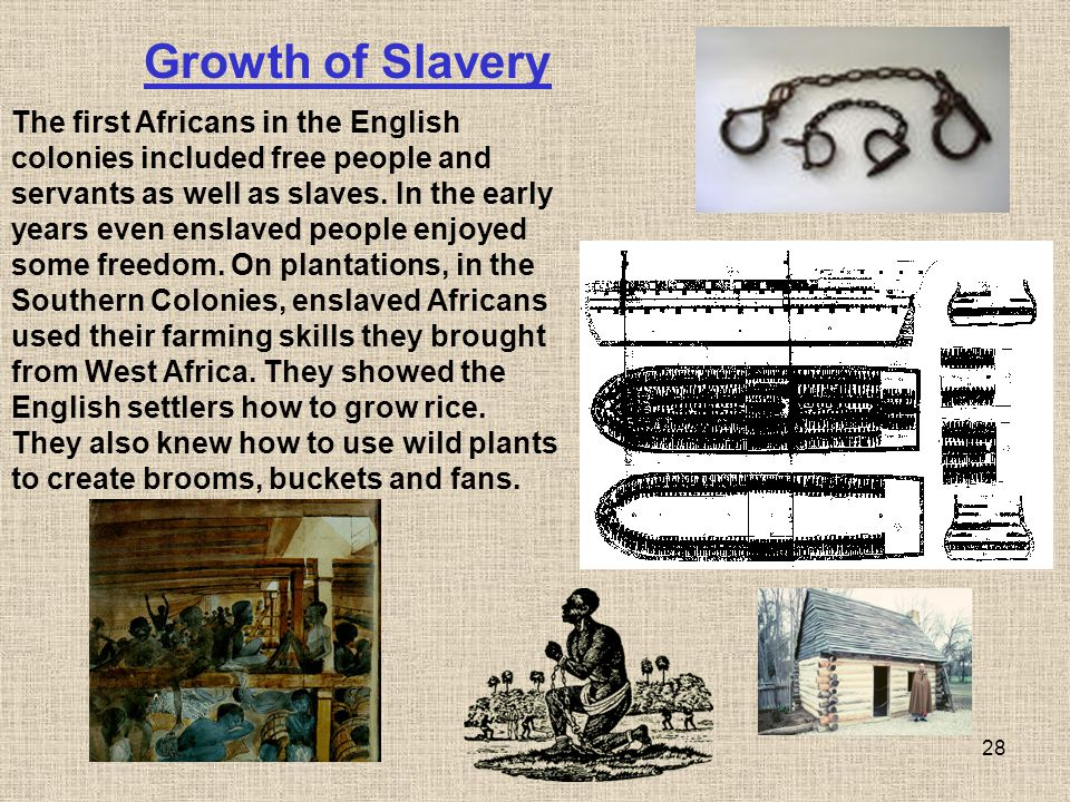 28 The first Africans in the English colonies included free people and servants as well as slaves. In the early years even enslaved people enjoyed som