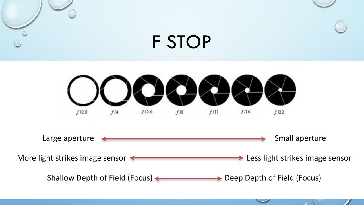 F STOP/SHUTTER SPEED COMBOS F1.4 2.0 2.8 4 5.6 8 11 16 22 1/1000 1/500 1/250 1/125 1/60 1/30 1/15 1/8 ¼