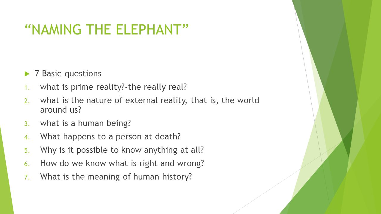 NAMING THE ELEPHANT  7 Basic questions 1.what is prime reality?-the really real.