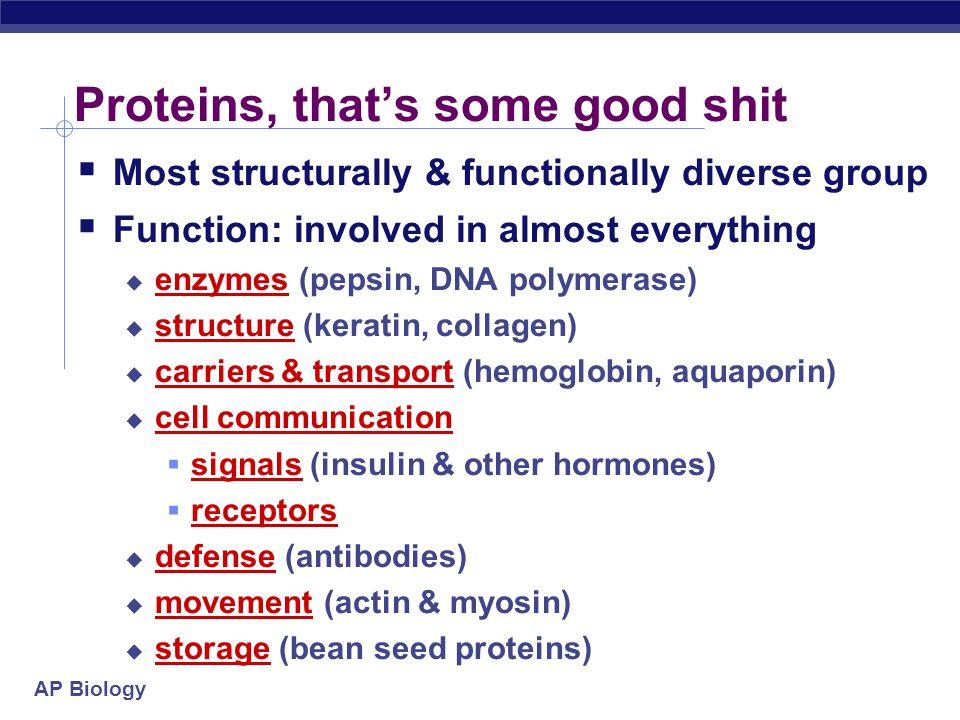 AP Biology 2008-2009 Proteins Multipurpose molecules