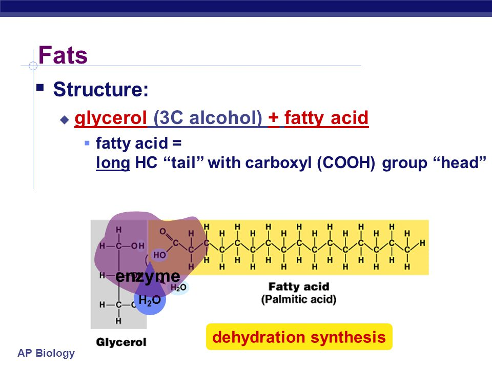 """AP Biology Lipids  Lipids are composed of C, H, O  long hydrocarbon chains (H-C)  """"Family groups""""  fats  phospholipids  steroids  Do not form p"""