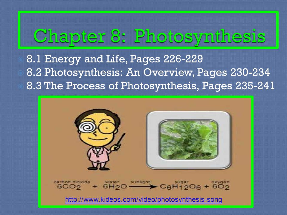  8.1 Energy and Life, Pages 226-229  8.2 Photosynthesis: An Overview, Pages 230-234  8.3 The Process of Photosynthesis, Pages 235-241 http://www.ki