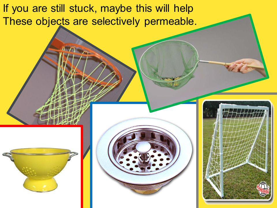 If you are still stuck, maybe this will help These objects are selectively permeable.