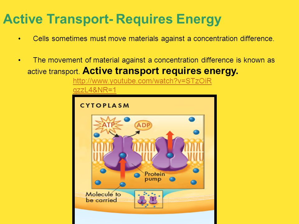 Active Transport- Requires Energy Cells sometimes must move materials against a concentration difference. The movement of material against a concentra