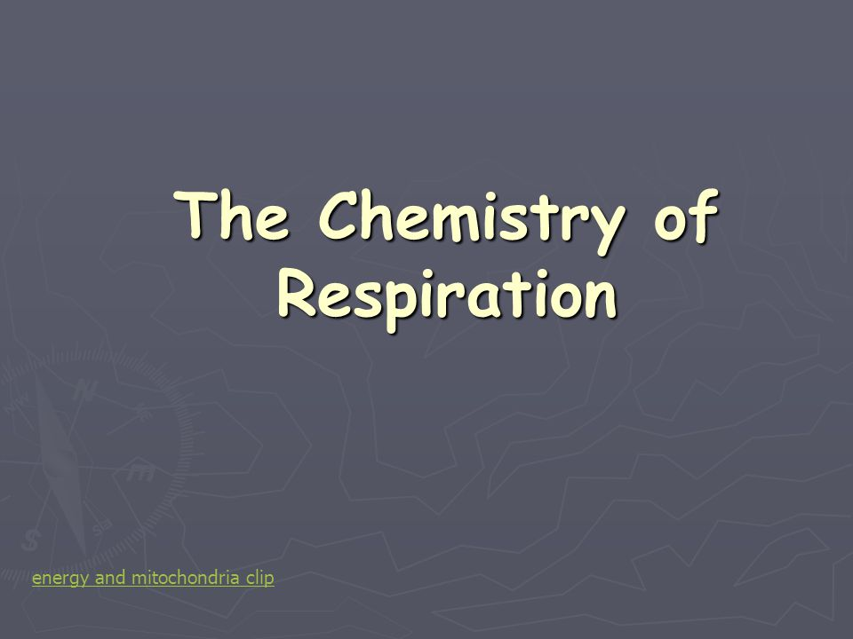 Adenosine triphosphate ► The energy released during respiration is not used directly by cells.
