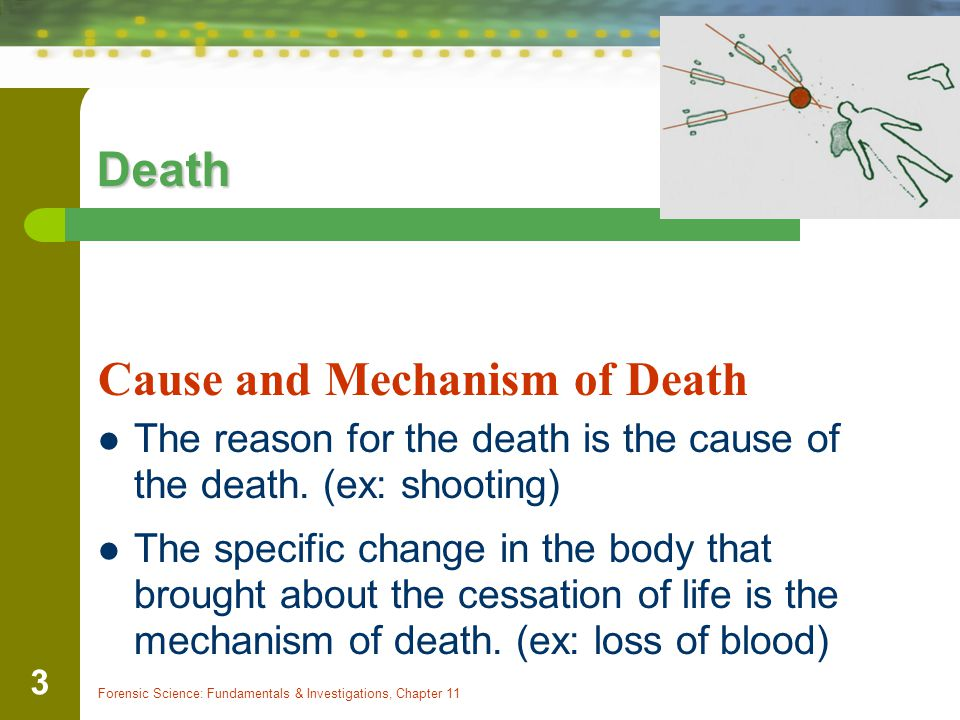 Forensic Science: Fundamentals & Investigations, Chapter 11 3 Death Cause and Mechanism of Death The reason for the death is the cause of the death. (