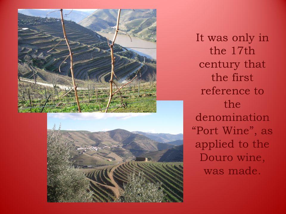 Douro and set up the Região Demarcada do Douro ( protected designation of origin).