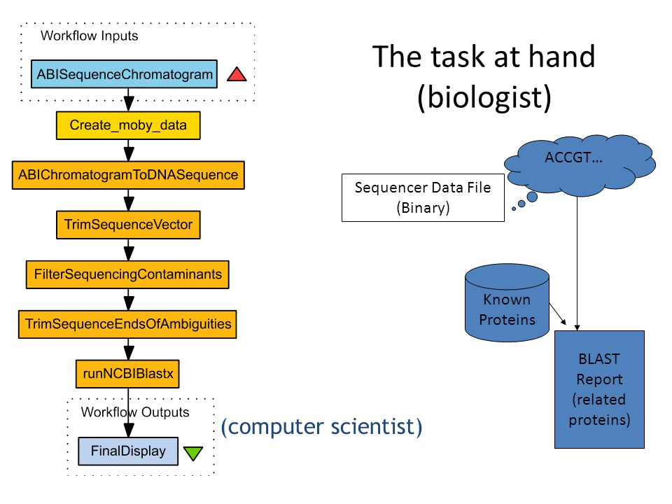 The task at hand (biologist) Sequencer Data File (Binary) ACCGT… Known Proteins BLAST Report (related proteins) (computer scientist)