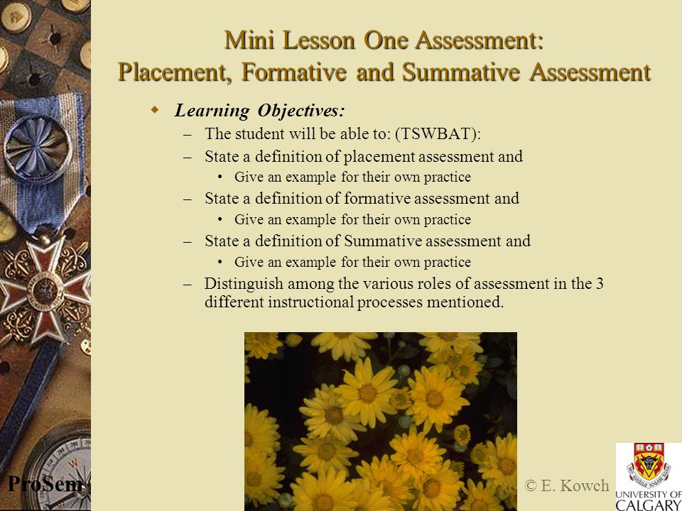 © E. Kowch ProSem Mini Lesson One Assessment: Placement, Formative and Summative Assessment  Learning Objectives: – The student will be able to: (TSW