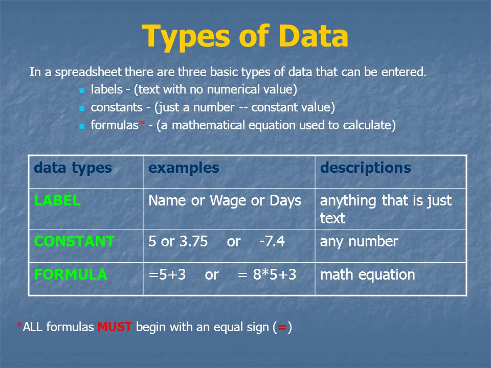 Types of Data In a spreadsheet there are three basic types of data that can be entered.