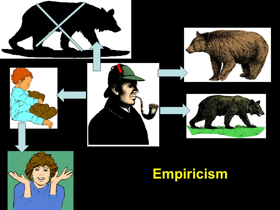 "Empiricism ""Bear"""