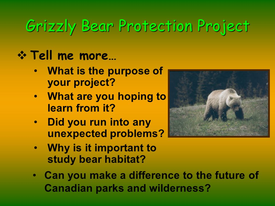 Grizzly Bear Protection Project  Tell me more… What is the purpose of your project.