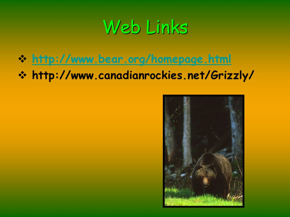 Web Links  http://www.bear.org/homepage.html http://www.bear.org/homepage.html  http://www.canadianrockies.net/Grizzly/
