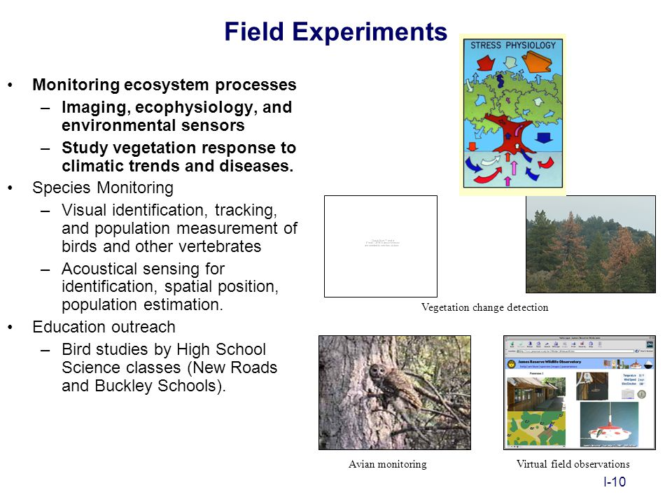 I-10 Field Experiments Monitoring ecosystem processes –Imaging, ecophysiology, and environmental sensors –Study vegetation response to climatic trends