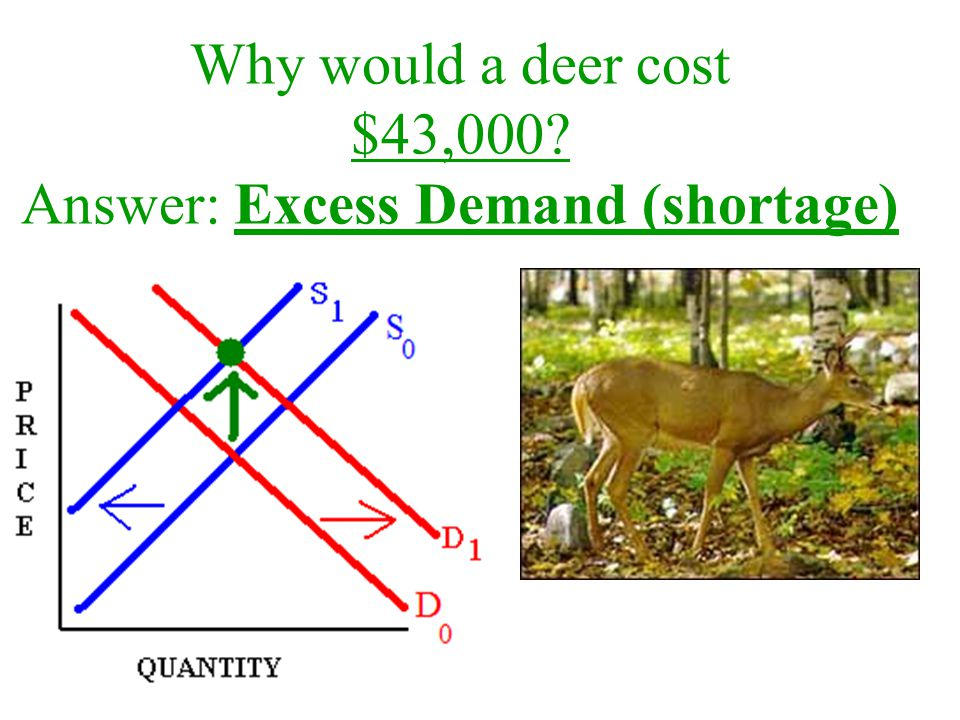 Why would a deer cost $43,000? Answer: Excess Demand (shortage)