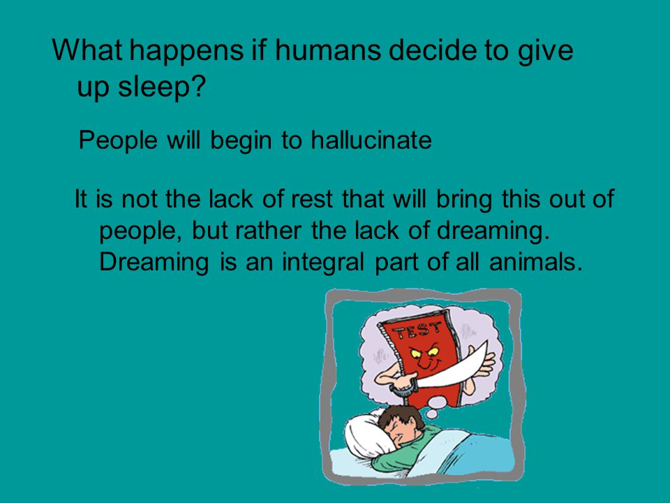 What happens if humans decide to give up sleep.