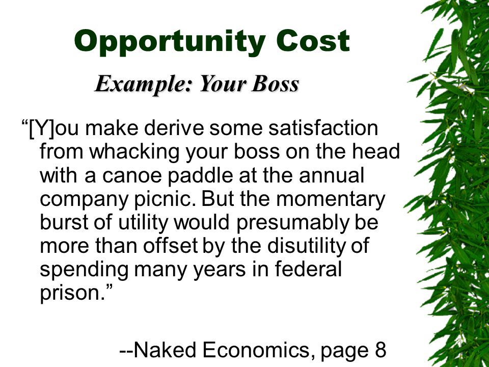 Opportunity Cost [Y]ou make derive some satisfaction from whacking your boss on the head with a canoe paddle at the annual company picnic.