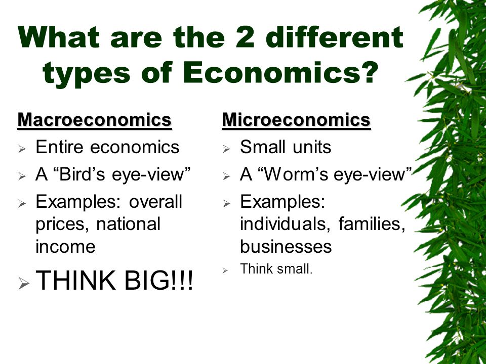 What are the 2 different types of Economics.