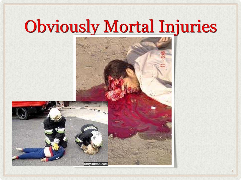Obviously Mortal Injuries 4