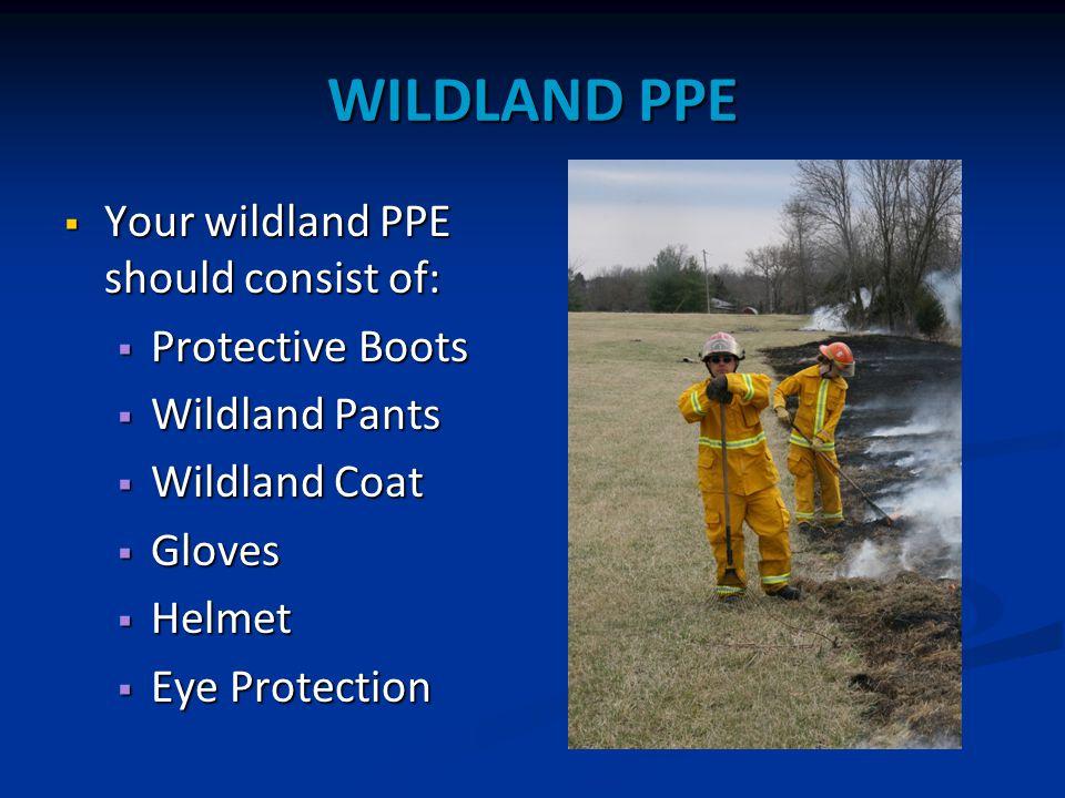 WILDLAND PPE  Your wildland PPE should consist of:  Protective Boots  Wildland Pants  Wildland Coat  Gloves  Helmet  Eye Protection