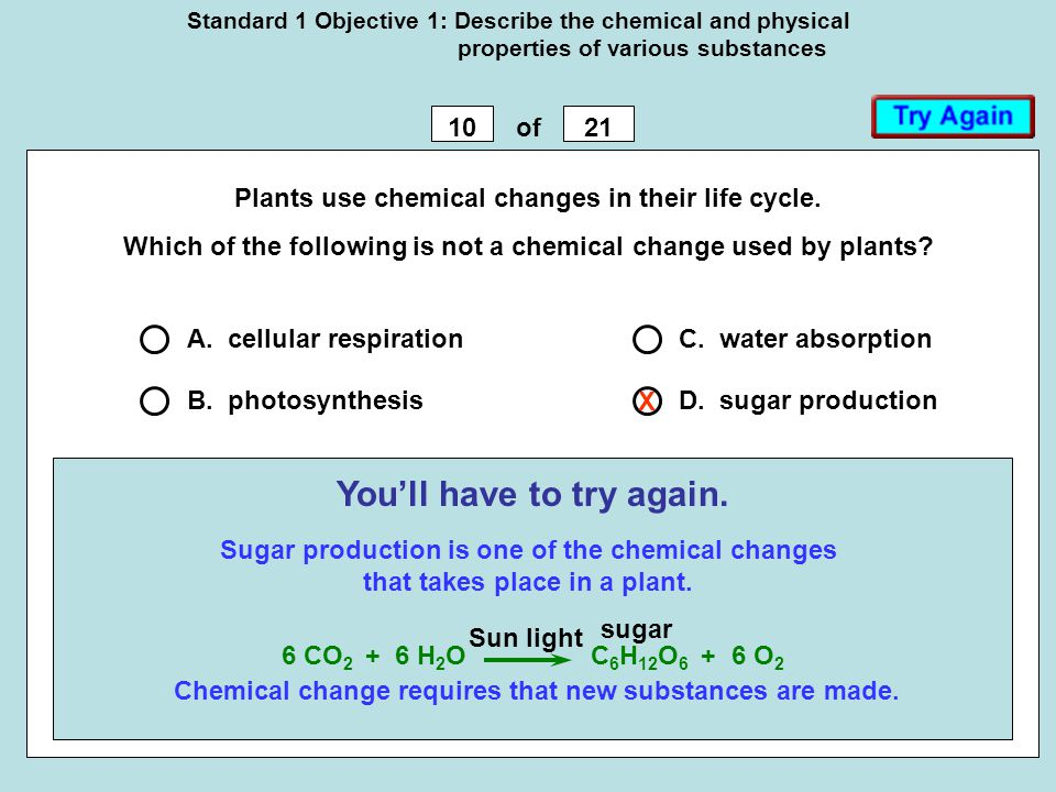 Standard 1 Objective 1: Describe the chemical and physical properties of various substances 1021of Plants use chemical changes in their life cycle. Wh