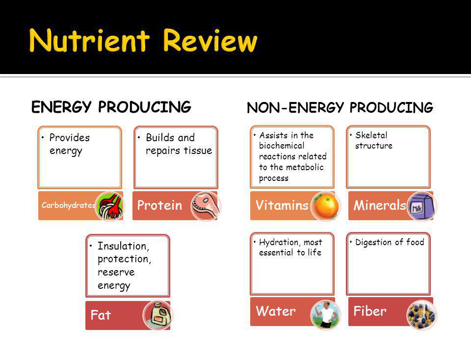 ENERGY PRODUCING Provides energy Carbohydrates Builds and repairs tissue Protein Insulation, protection, reserve energy Fat NON-ENERGY PRODUCING Assists in the biochemical reactions related to the metabolic process Vitamins Skeletal structure Minerals Hydration, most essential to life Water Digestion of food Fiber