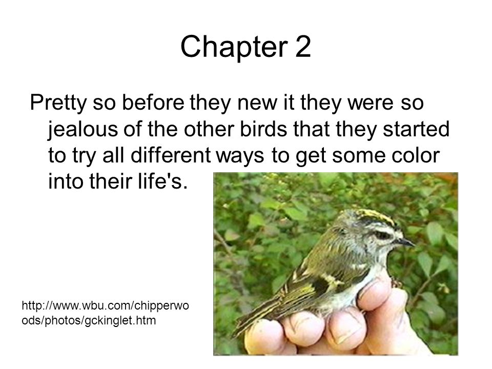 Chapter 2 Pretty so before they new it they were so jealous of the other birds that they started to try all different ways to get some color into their life s.