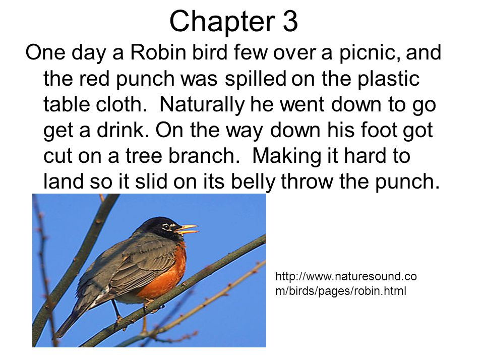 Chapter 3 One day a Robin bird few over a picnic, and the red punch was spilled on the plastic table cloth.