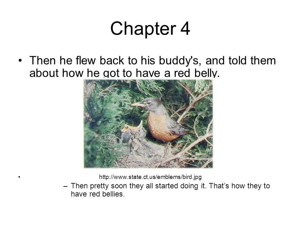 Chapter 4 Then he flew back to his buddy s, and told them about how he got to have a red belly.