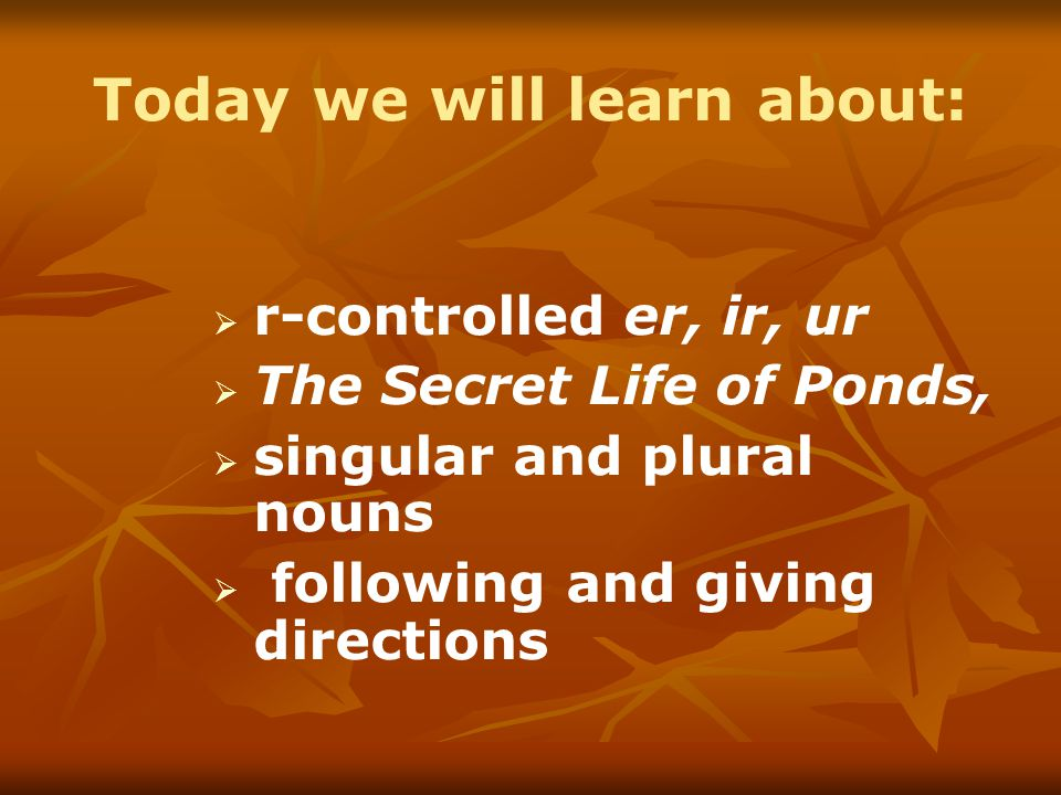 Today we will learn about:   r-controlled er, ir, ur   The Secret Life of Ponds,   singular and plural nouns   following and giving directions