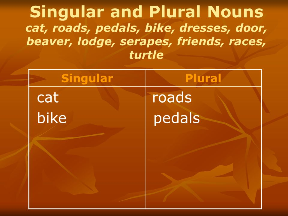 Singular and Plural Nouns cat, roads, pedals, bike, dresses, door, beaver, lodge, serapes, friends, races, turtle SingularPlural cat bike roads pedals