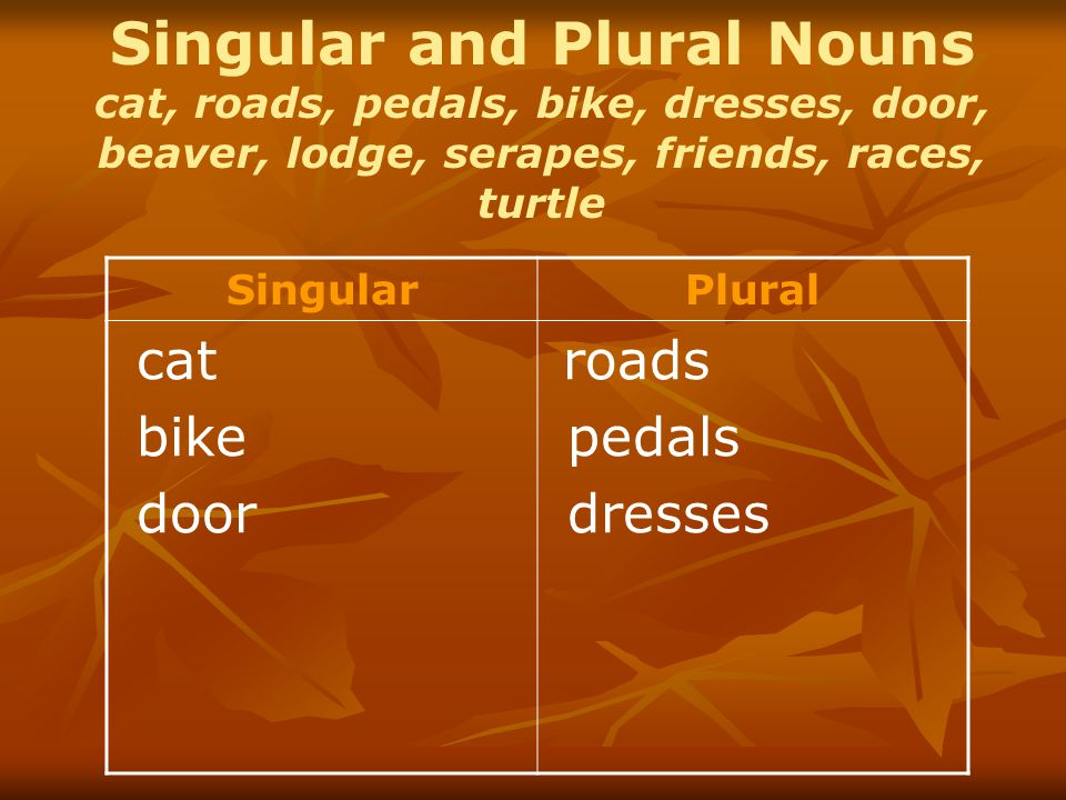 Singular and Plural Nouns cat, roads, pedals, bike, dresses, door, beaver, lodge, serapes, friends, races, turtle SingularPlural cat bike door roads pedals dresses